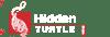 Intermediate | Hidden Turtle