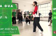 Applications Palm 1 – Ba Gua Camp 2020 Part 3