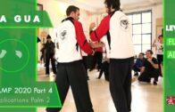 Applications Palm 2 – Ba Gua Camp 2020 Part 4