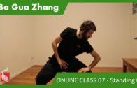 Ba Gua Standing 02 – ONLINE CLASS 07