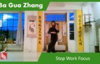 Ba Gua Step Work Focus – Online Class 29