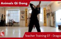 Teacher Training 07 – Dragon 02 (Only Teacher Training Students)