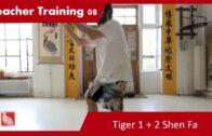 Teacher Training 08 – Tiger 1+2 (Teacher Training Students only)